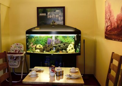 Station House Dining Room, Fish Tank